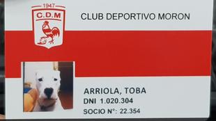 El carnet de Toba, el perro de Deportivo Morón