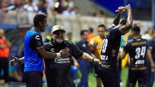 Maradona celebra con euforia el gol de Vinicio Angulo.