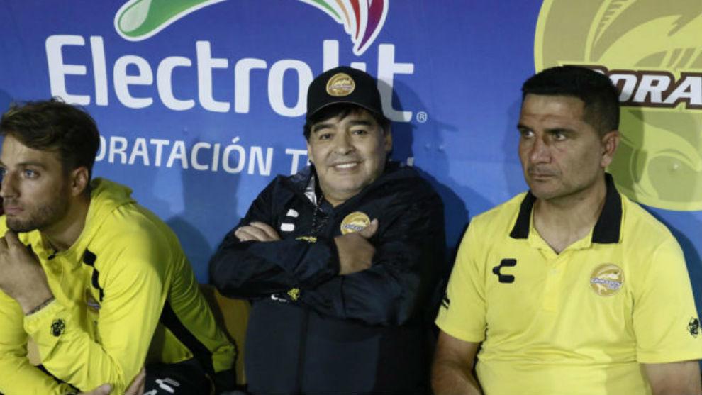 Maradona sonríe en la banca de Dorados.
