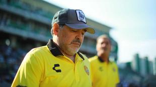 Maradona podría tener un cuarto hijo en Cuba