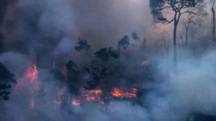 Bolsonaro insinúa que las ONG pueden estar detrás de incendios en el...
