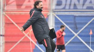 Pizzi prepara el equipo titular.