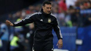 Lionel Scaloni, director técnico de la Selección Argentina.