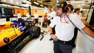 """Brundle: """"Alonso me ha confirmado que volverá a la F1 en..."""