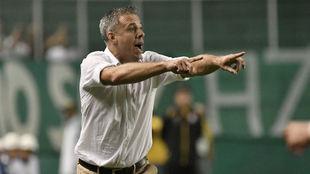 Pusineri da indicaciones durante un partido del Deportivo Cali.