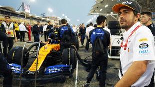 Fernando Alonso, libre y disponible