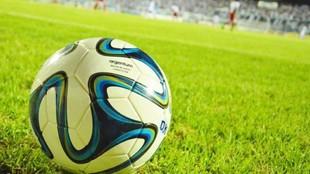 La pelota oficial de la Liga Profesional.
