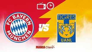 sd Mundial de Clubes m Tigres vs Bayern Múnich: fecha, horario y...
