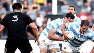 El Rugby Championship vuelve con sus cuatro equipos y nuevas reglas