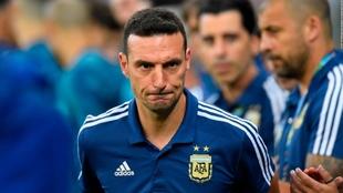 Lionel Scaloni, técnico de Argentina.